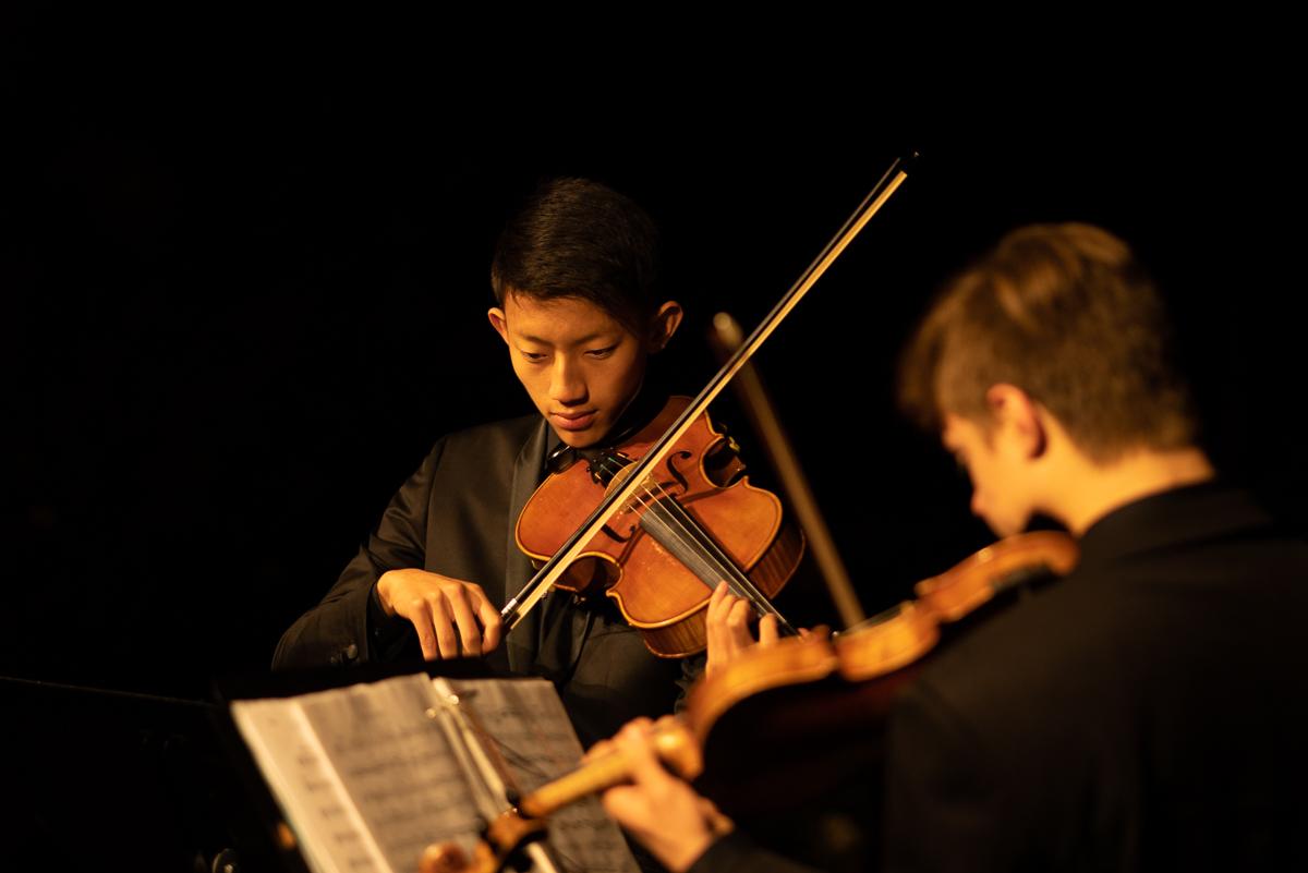 Instrumental Musicians